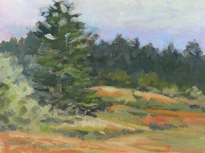"Meadow on Humboldt Hill, 9""x12'"