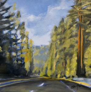 "Redwoods on 101, 8""x8"""