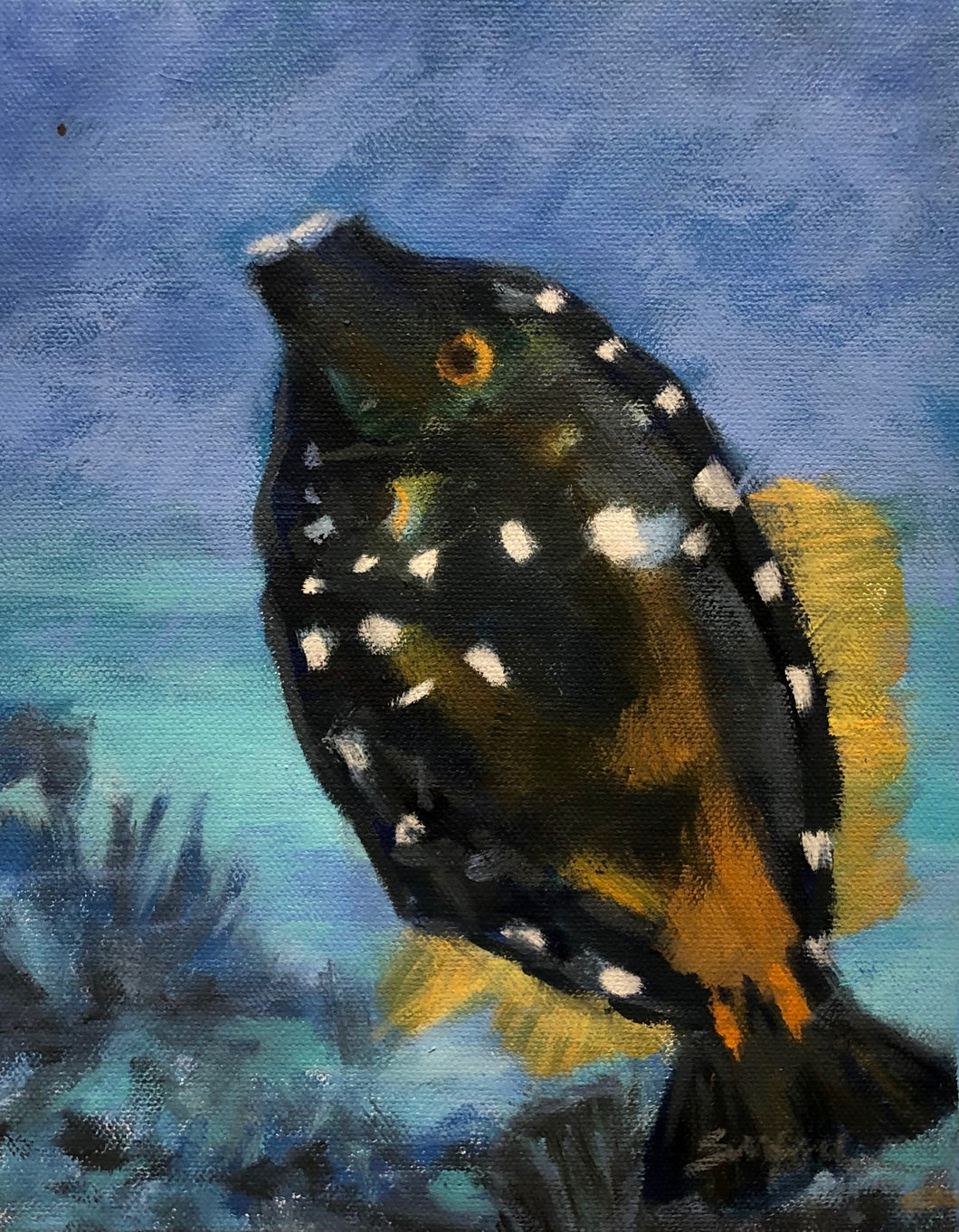 Tropical Fish, 8