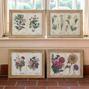 Set of 4 Four Seasons Page Framed Prints