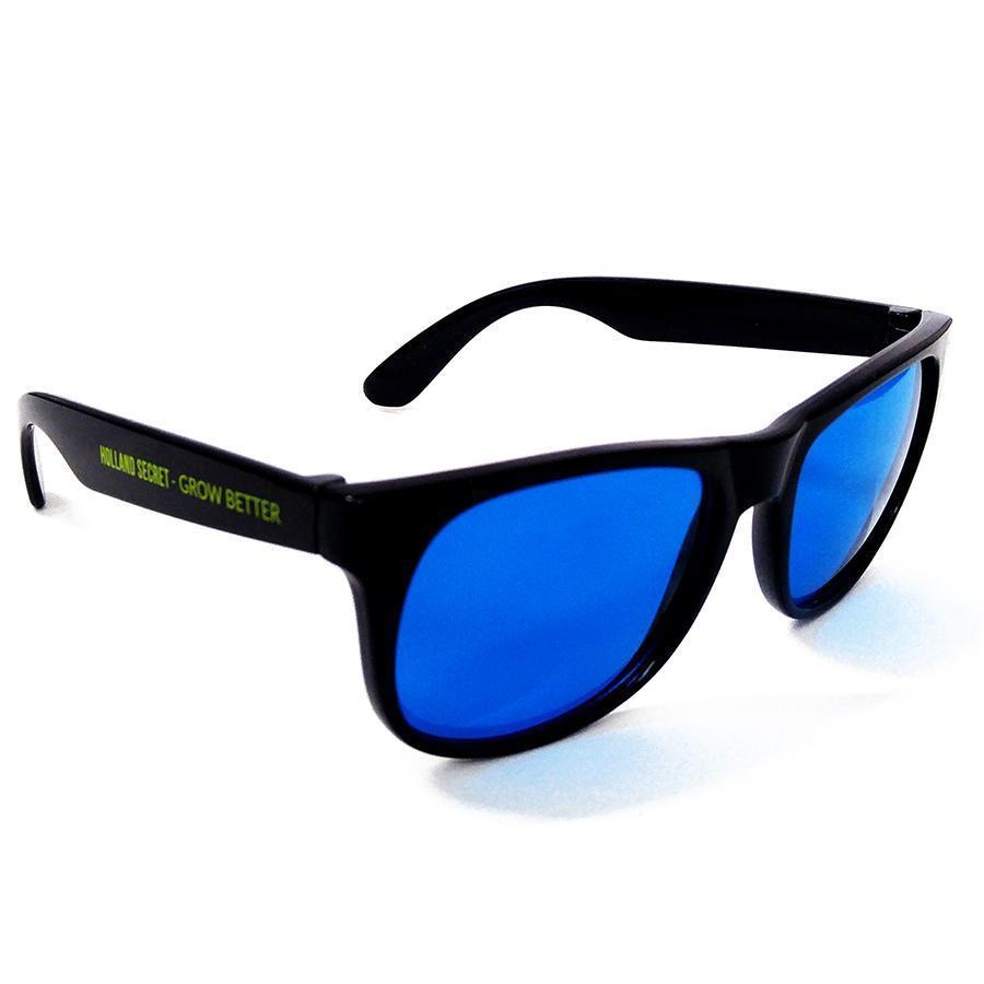 Sunglasses with blue lenses seen from the right front side. White background.
