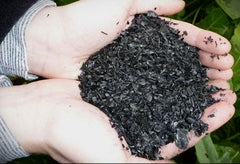 Black Owl Biochar - In Good Hands