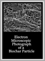 Electron Microscopic Photograph of Biochar Particle