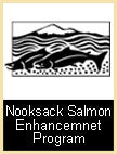 Nooksack Salmon Enhancement Program