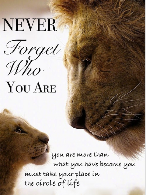 Lion king personalised poster