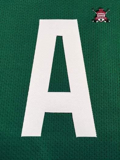"ALTERNATE ""A"" OFFICIAL PATCH FOR DALLAS STARS HOME 2013-PRESENT JERSEY - Hockey Authentic"