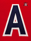 "ALTERNATE ""A"" OFFICIAL PATCH FOR WASHINGTON CAPITALS HOME 2007-PRESENT JERSEY - Hockey Authentic"