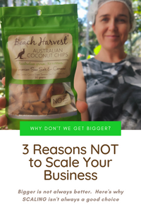 3 Reasons NOT to Scale Our Business