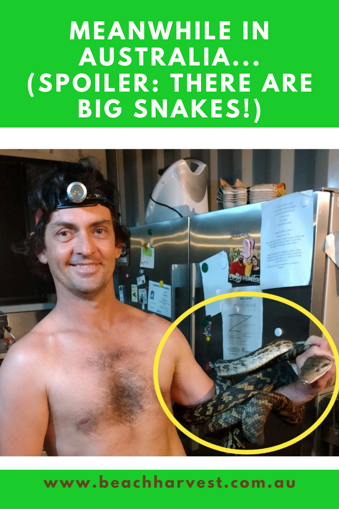 Coco-NUTS about Pythons!