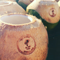 Coconuts for Weddings & Corporate Events