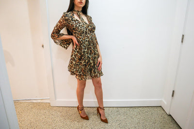 Intermix Leopard Dress