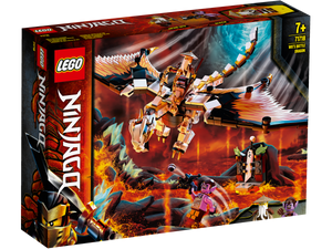 LEGO Ninjago TV Series 71718