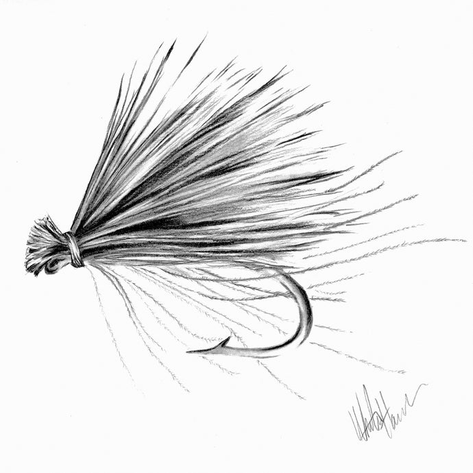 CDC Elk Hair Caddis Fly Art Print