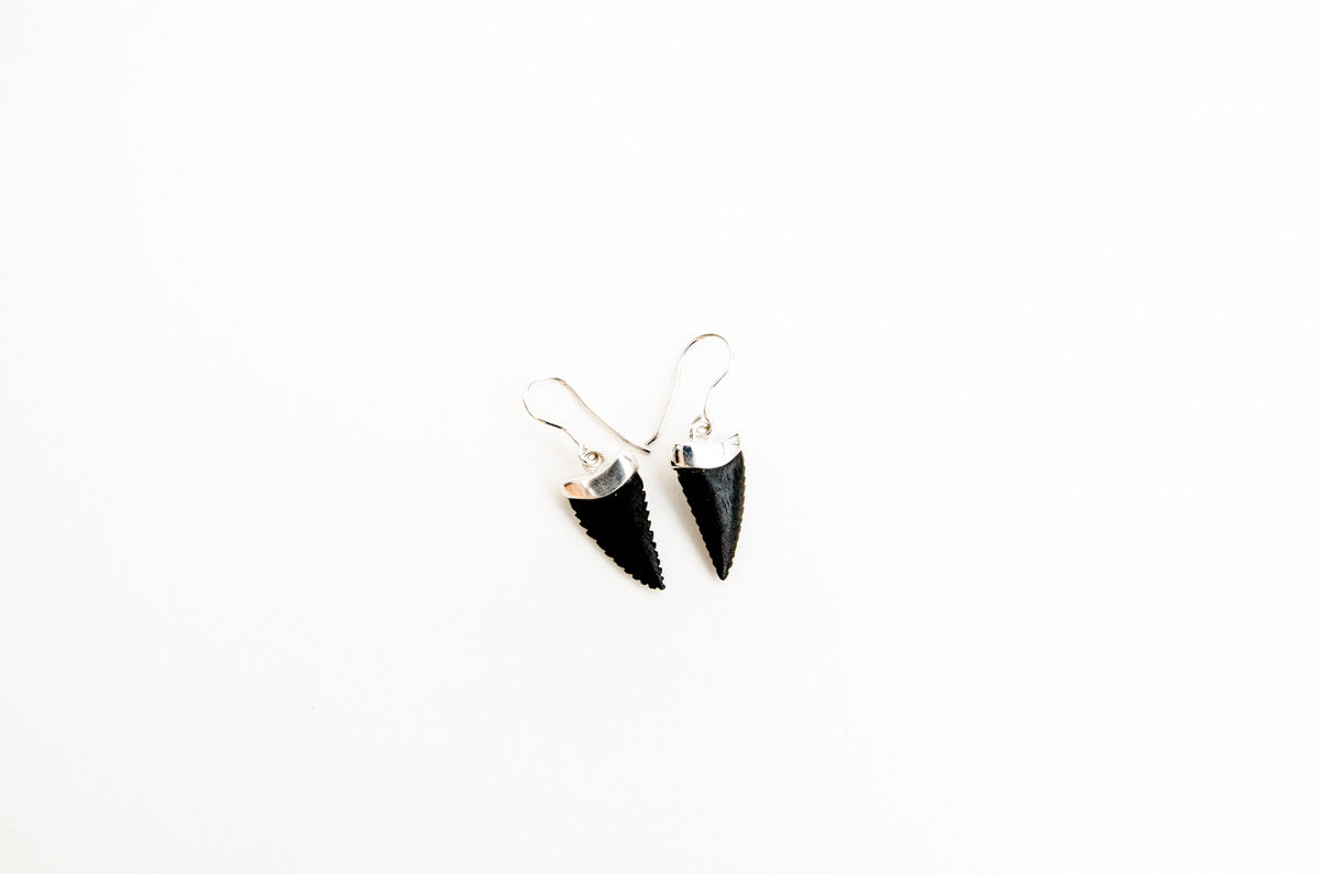 Sharks Tooth Sterling Silver Ebony Earrings