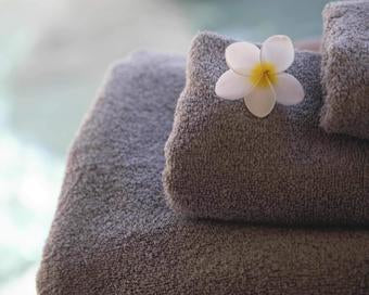 BAMBOO HAND TOWEL IN DUST | TOWL