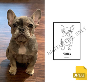 VOGUE - Custom Pet Portraits (Digital File) - Vogue Paws