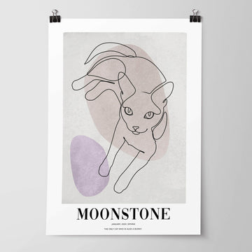 Moonstone - Custom Pet Poster - Vogue Paws