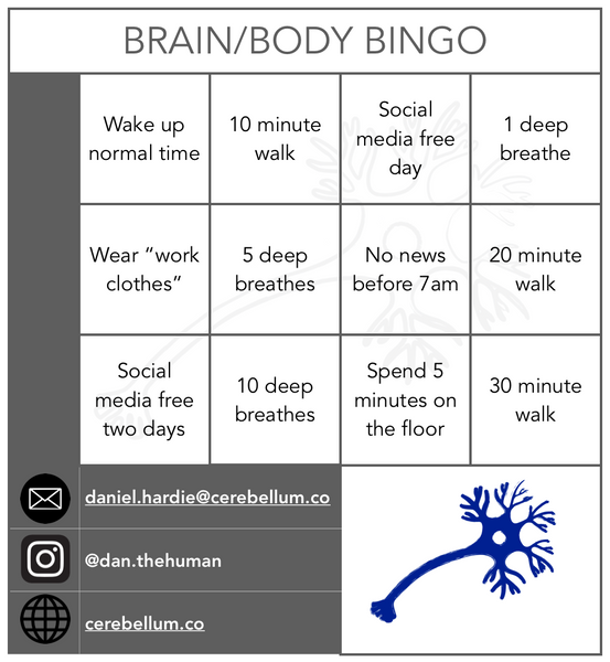 Brain/Body bingo