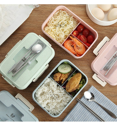 Eco-friendly Bento Box Microwave Heated