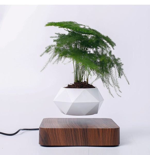 Floating Geometric Plant Pot - The Meow Lab