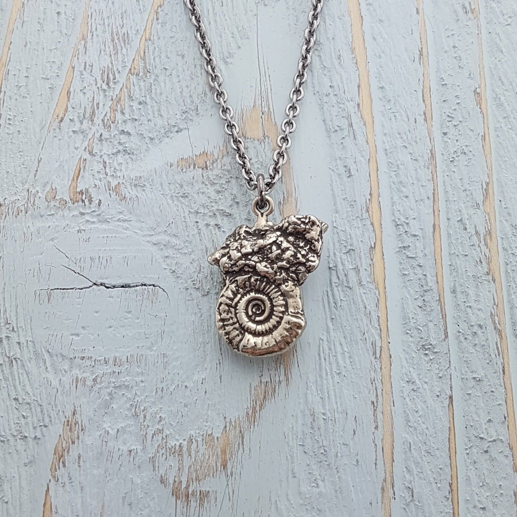 Ammonites Fossil Necklace - Gwen Delicious Jewelry Designs