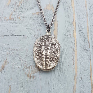 Trilobite Fossil Necklace - Gwen Delicious Jewelry Designs