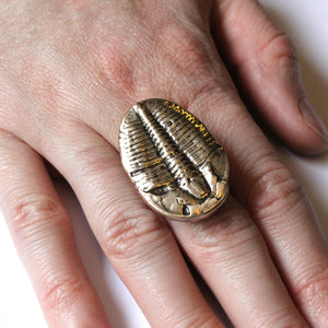 Trilobite Fossil Ring - Gwen Delicious Jewelry Designs