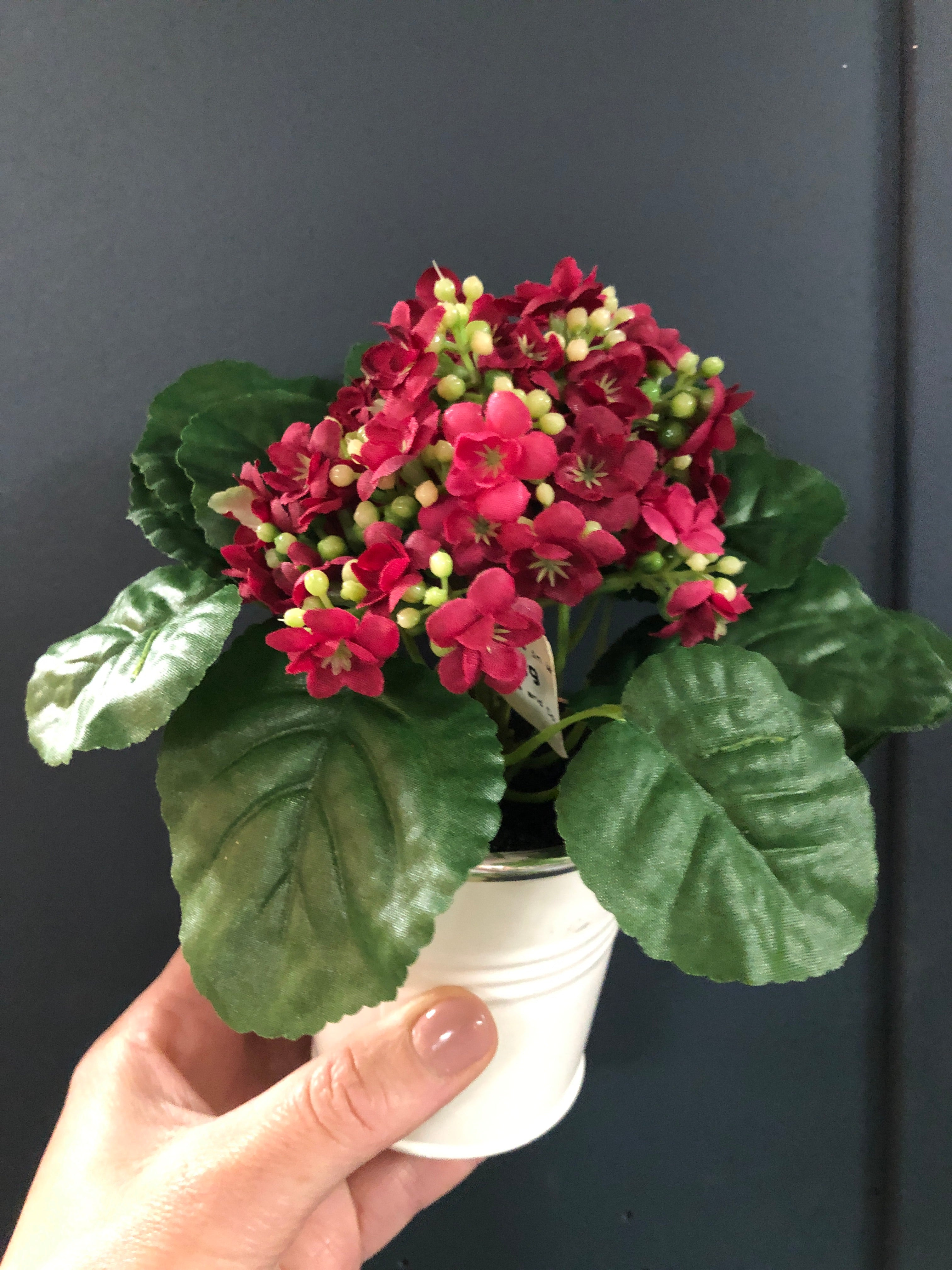 Faux Kalanchoe potted plant