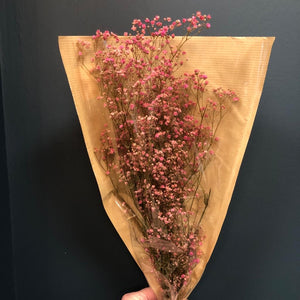 Bouquet of dried flowers gypsum