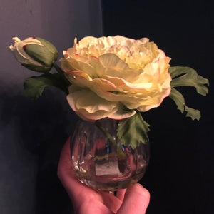 Green ranunculus in mini vase