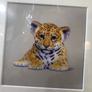 Baby Jaguar mounted print
