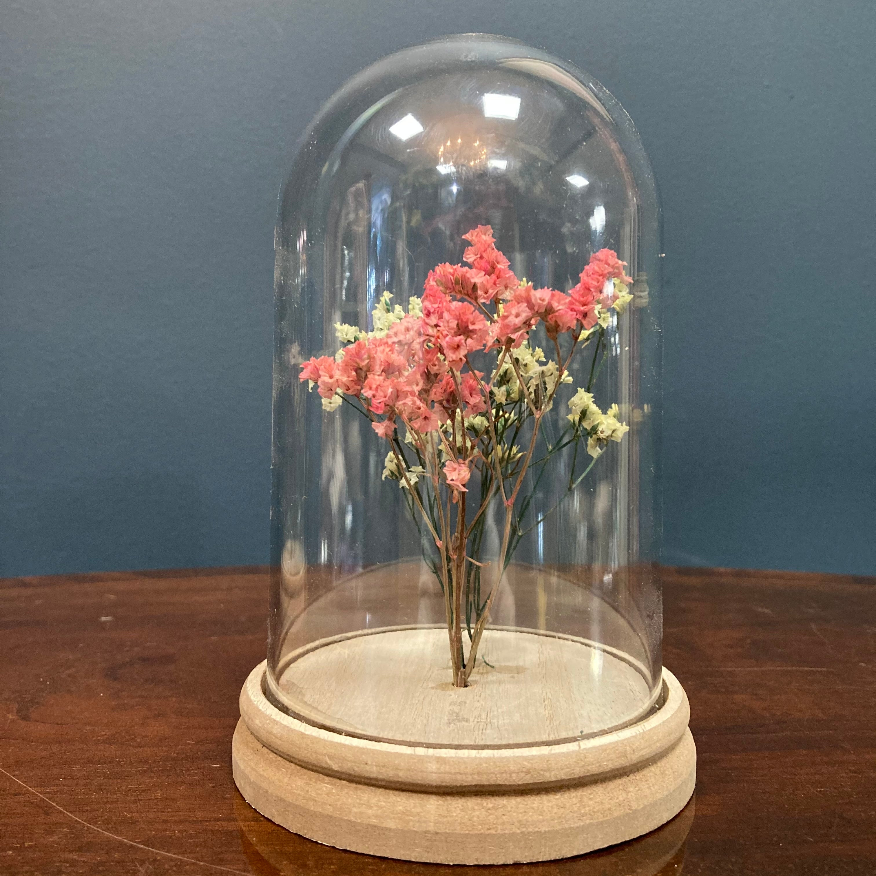 Pink & cream dried flower cloche