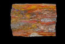Load image into Gallery viewer, Rare Petrified Wood Knot Board Of Radiant Natural Beauty