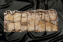 Load image into Gallery viewer, Stunning Petrified Wood Board - Bar Top or Countertop