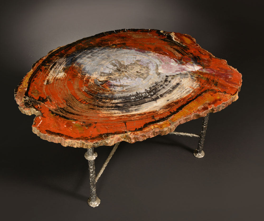 arizona petrified wood for sale