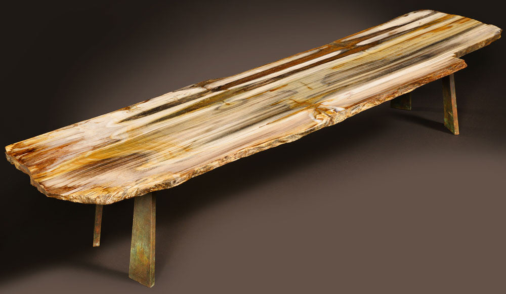 petrified table