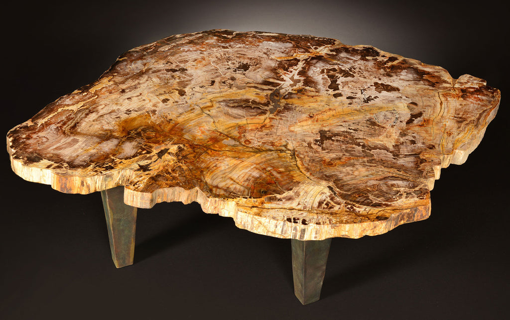 petrified wood dining table Specimen