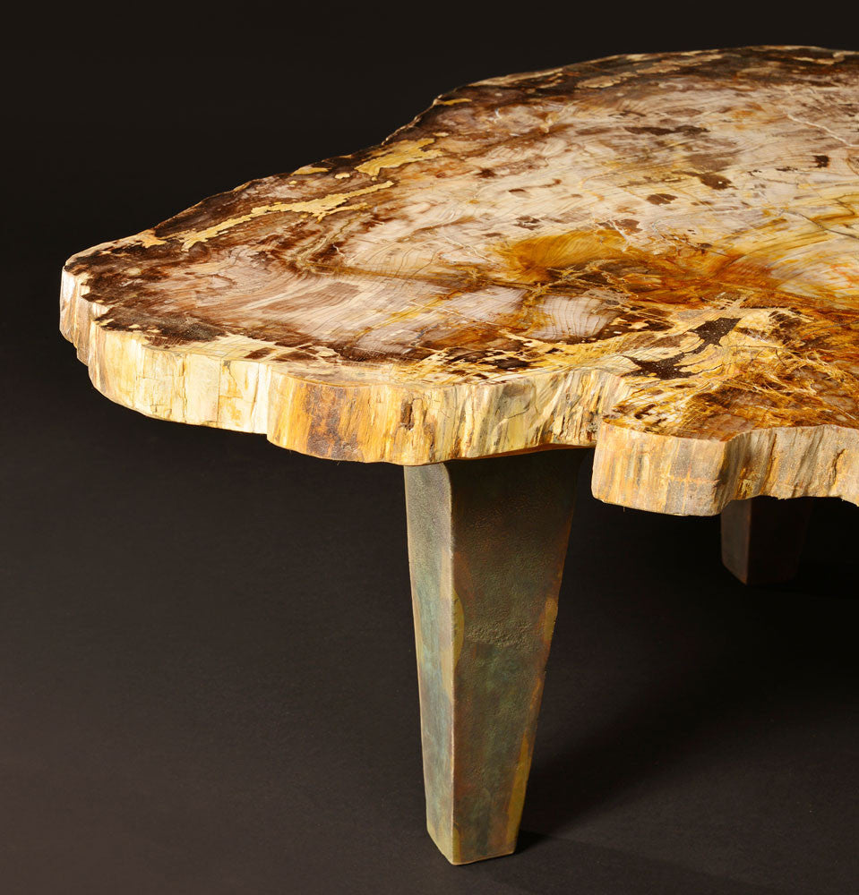 petrified wood table Specimen