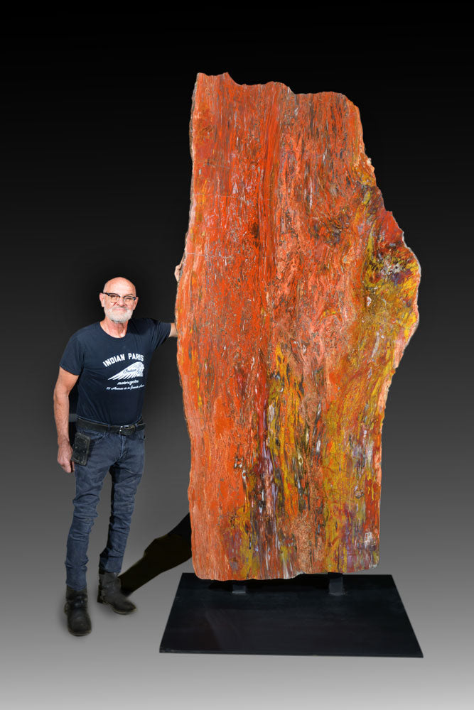 A Gift from Nature: Standing Petrified Wood Specimen with Warm Tones
