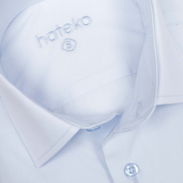 Ice Blue Regular Fit Dress Shirt