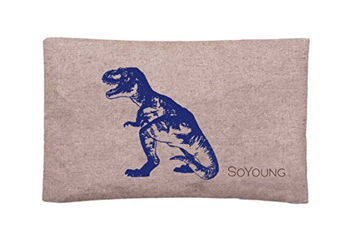 Soyoung Ice Pack - Adults - Kids - Lunch Boxes - Coolers - Backpacks - Eco-Friendly - Non-Toxic - Blue Dinosaur