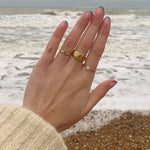 9ct signet ring - seol gold