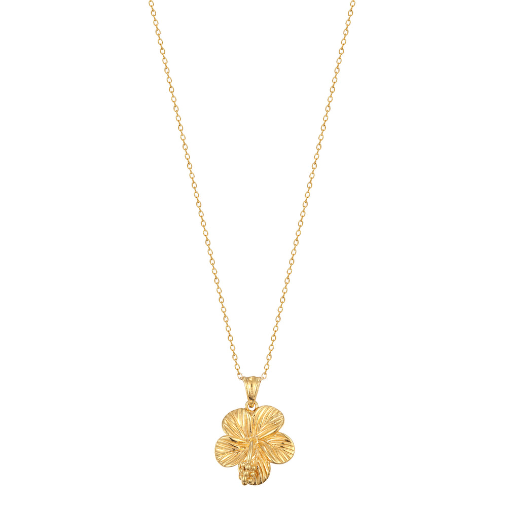 Hibiscus charm - seol-gold