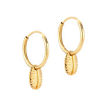 gold - shell hoop earrings - seolgold