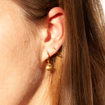 Shell Hoops - seol-gold
