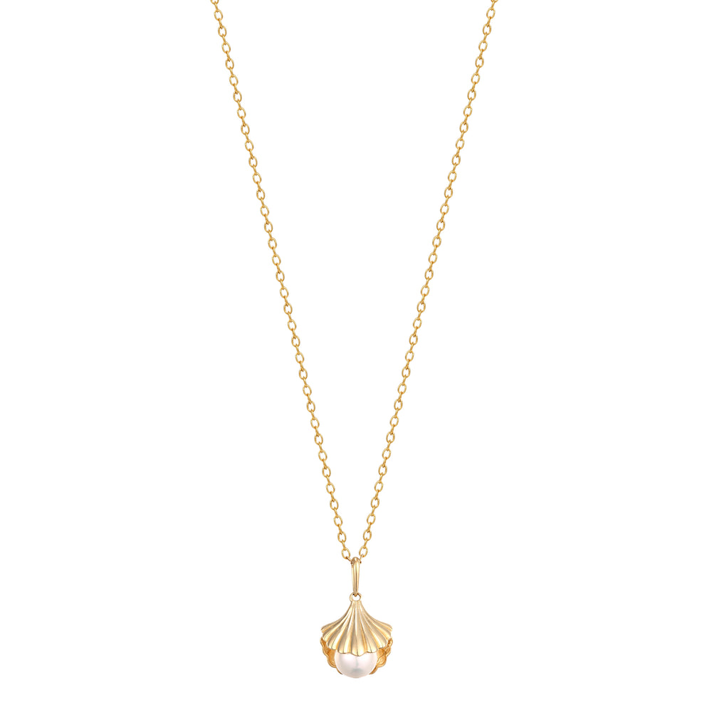 gold shell necklace - seol-gold