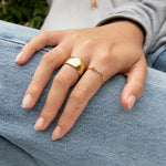 Wide Rounded Cigar Band Ring - seol-gold