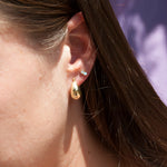 Thick Gold Hoops - seol-gold