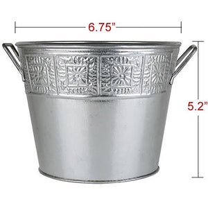 Buck Lee's Naturals Galvanized Scrolled Pail 6 Pack Bundle