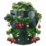 Strawberry Grow Bag Open Style Vegetable Planting
